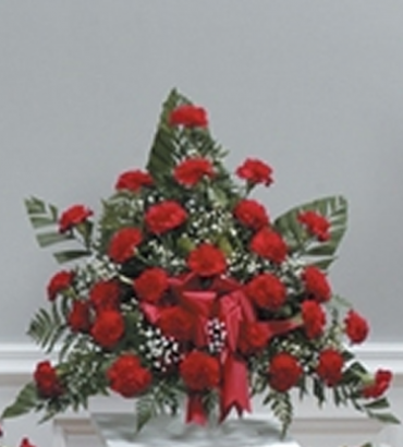 Grandest Love Carnation Pedestal Arrangement
